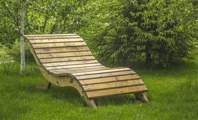 Bench for rest on the green grass near the trees