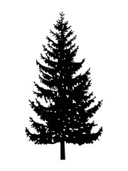 Silhouette of pine tree. Can be used as poster, badge, emblem, banner, sign, decor...