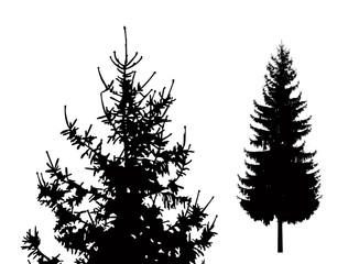 Silhouette of pine tree. Hand made.