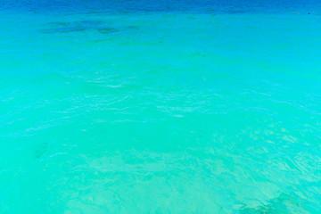 Photo sur Aluminium Vert corail Beautiful tropical Maldives island with white sandy beach and se