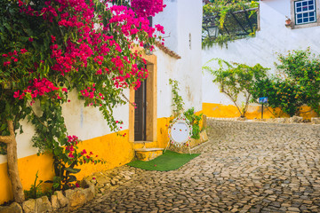 Beautiful narrow streets in the medieval town of Obidos. Portugal