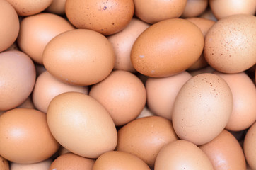 eggs raw plenty for background