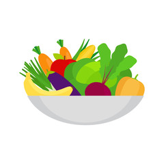 Healthy food illlustration with vegetables on the plate vector isolated object