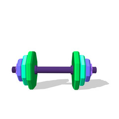 Polygonal dumbbell.3d Vector colorful illustration.Front view.