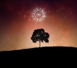 Tree and zodiac signs