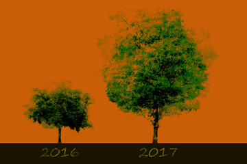 Growth in 2017 with an orange background