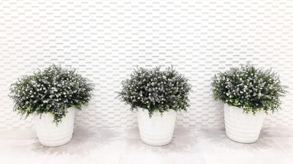 flower pot on white background,in white tone