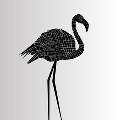 vector bird flamingo illustration pink exotic art