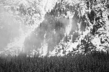 Mountains - Zakopane in the winter - monochrome