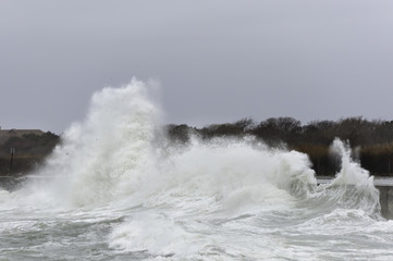 Powerful wave Ocean Drive