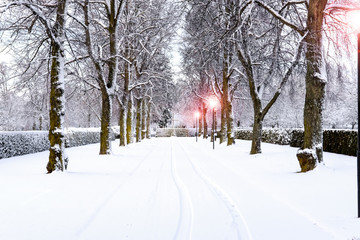 Country in Winter Season