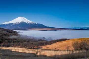 早春の富士と山中湖