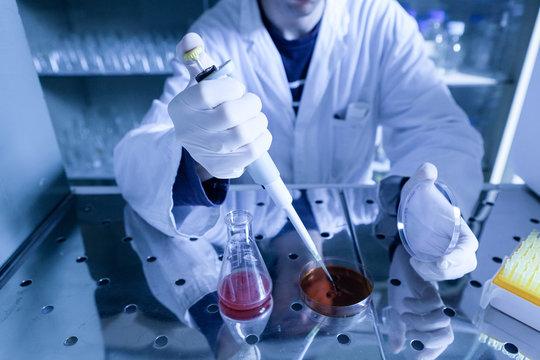 Biologo che manipola microrganismi in condizioni di sterilità