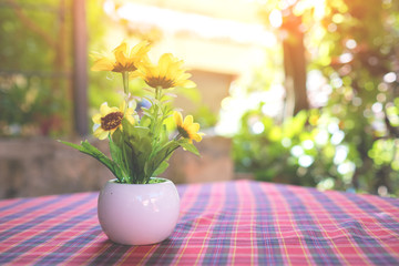 flower pot on red checkered tablecloth, Coffee table