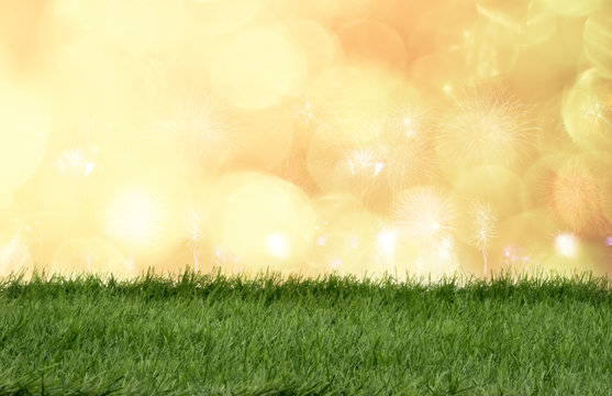 Green grass in front of bokeh lights and sparkle background.