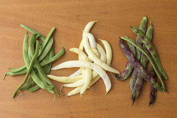Bean pods of different colors