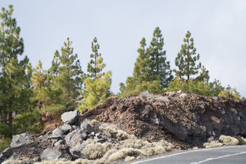 Teide National Park, Tenerife - the most spectacular travel destination