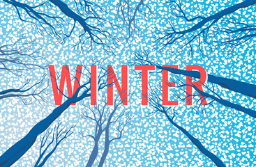 Winter landscape with text.