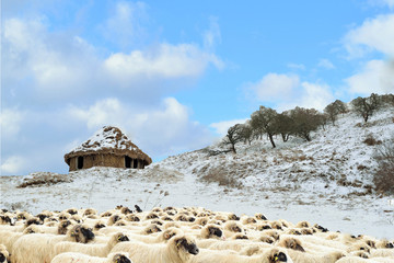 An abandoned house built of clay and straw, winter on a hill