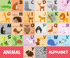 Cute cartoon zoo illustrated alphabet with funny animals. English alphabet. Learn to read. Isolated Vector illustration.