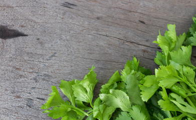 Closeup celery on wood background