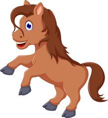cute horse cartoon running