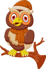 cute owl cartoon standing on branch