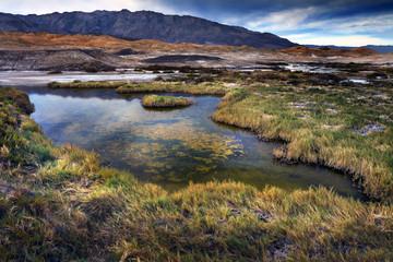 Salt Creek, Death Valley, California