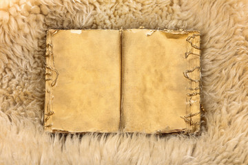 Old gold book on sheepskin background with empty space for text