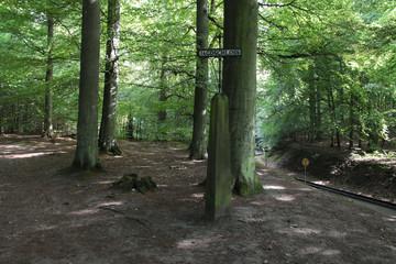 Wandern, Rügen, Granitz, Wanderweg