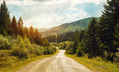 Road pass view to walkway and mountains. Carpathians in Summer.