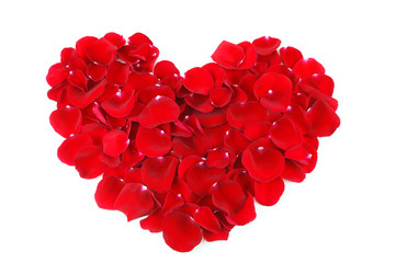 red heart shape by red rose petals