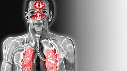 Erkältung Obere Atemwege Textfreiraum rechts 16 zu 9