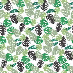 Floral seamless pattern with hand drawn monstera palm leaves sha