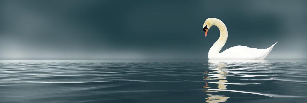 Loney Swan