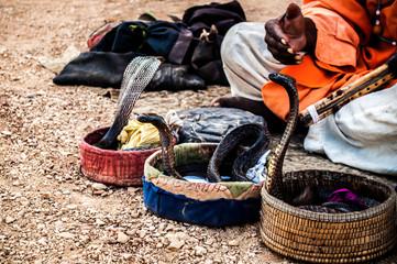 Snake Cahrmer