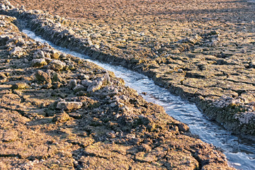 Water stream among dried cracked earth
