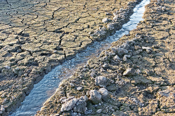 Water stream among dried cracked soil