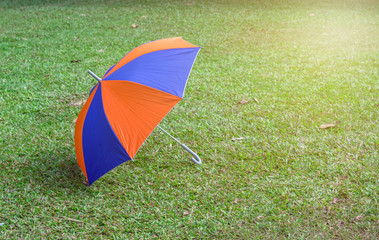 Umbrella rainbow colors, lying on the grass in the park
