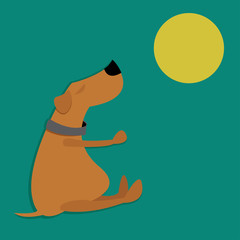 Brown dog sitting and looking at the moon on a green background.