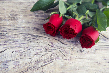 Red roses with blank space for lovely message for Valentine