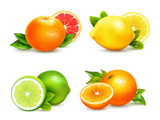 Citrus Fruits  4 Realistic Icons Set