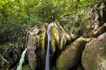 Small waterfall in Masoala national park, Madagascar