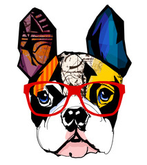 Poster de jardin Art Studio Portrait of french bulldog wearing sunglasses