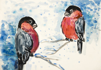 two birds - bullfinch in winter - watercolor picture