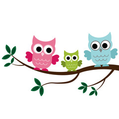Poster Uilen cartoon Three Owls sitting on the branch