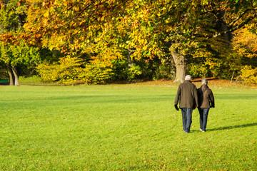 Coppia di anziani a passeggio in autunno all'Englischer Garten di Monaco di Baviera, Germania