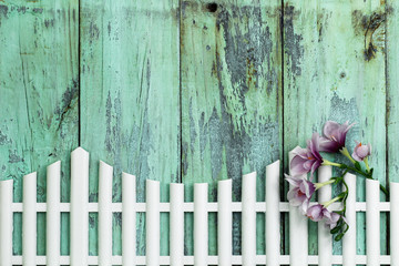Purple flowers hanging on white picket fence with wood background
