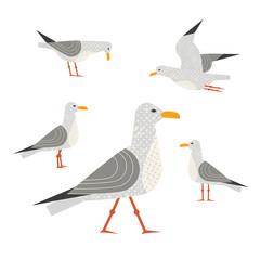 Seagull icon set. Freehand cartoon cute style. Flying bird logo. Seabird marine symbol isolated. Stylized nautical animal emblem. Element for banner background. Vector design of advertisement label