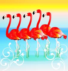 Flamingos in row sunny tropical vector background